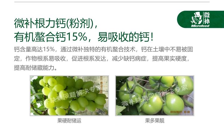 贝斯特全球最奢华网站根力钙(粉剂)电脑版_05.jpg