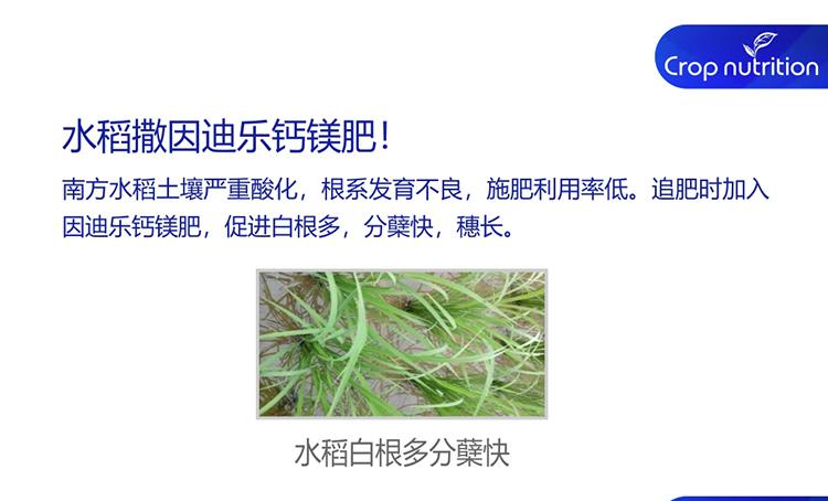 因迪乐有机螯合钙镁肥_05.jpg