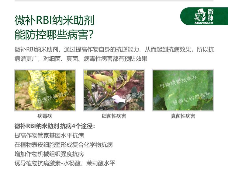 贝斯特全球最奢华网站RBI纳米助剂_05.jpg