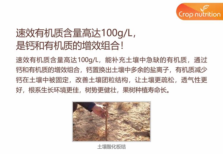 990_08.jpg