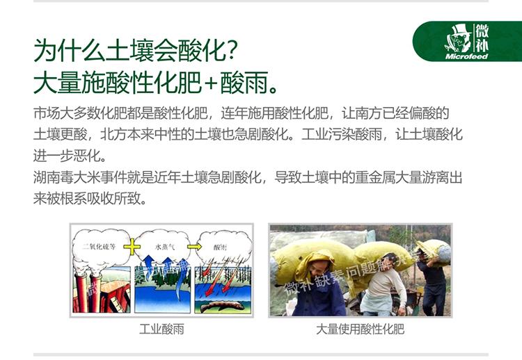 贝斯特全球最奢华网站调力_03.jpg