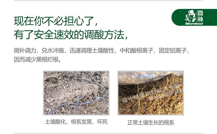 贝斯特全球最奢华网站调力_05.jpg