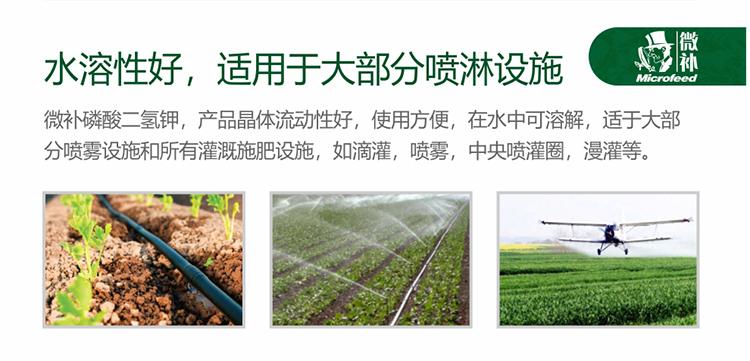 贝斯特全球最奢华网站磷酸二氢钾_05.jpg