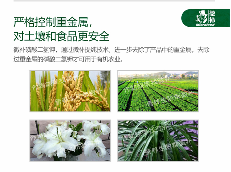 贝斯特全球最奢华网站磷酸二氢钾_06.jpg