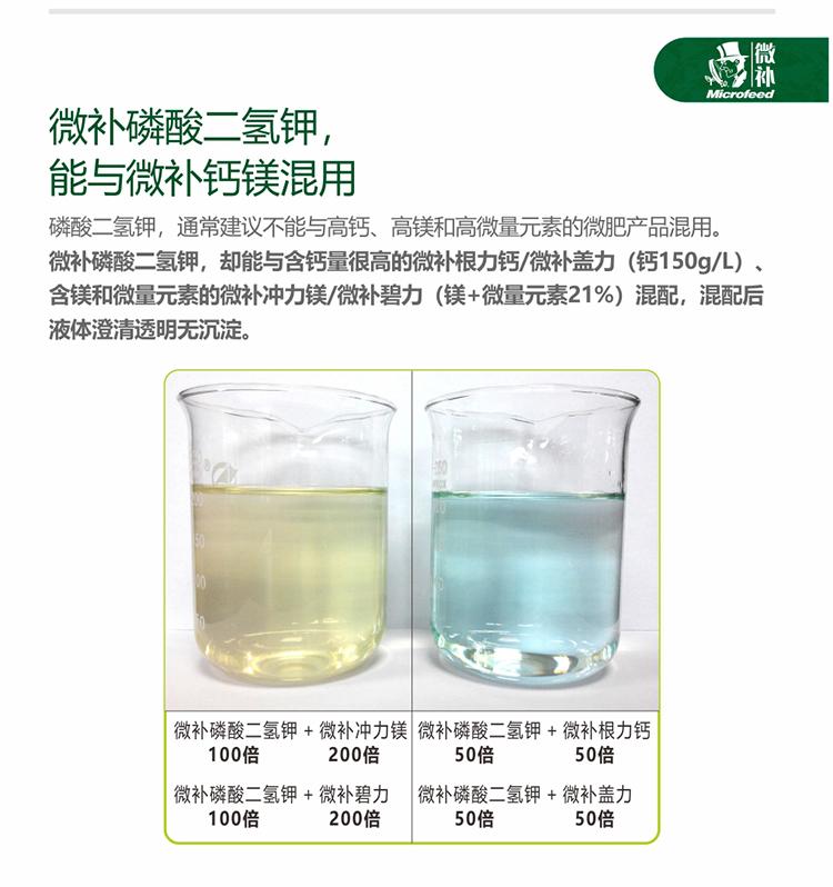 贝斯特全球最奢华网站磷酸二氢钾_07.jpg
