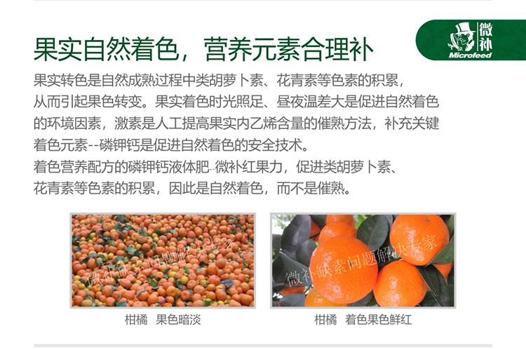 贝斯特全球最奢华网站红果力990_01_03.jpg
