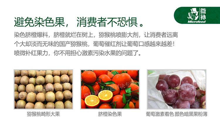贝斯特全球最奢华网站红果力990_01_04.jpg