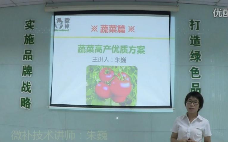 蔬菜-提苗壮长、提高坐果高产方案.微补讲座