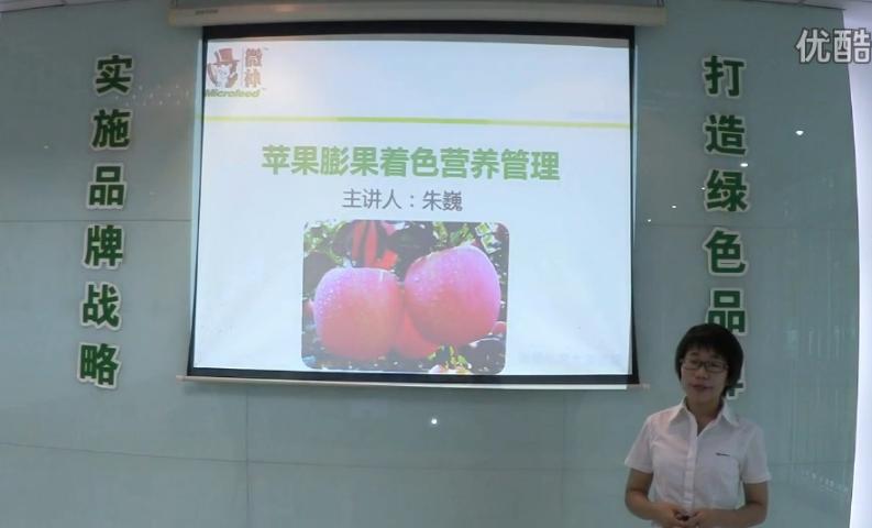 苹果-如何补钙防苦痘痘斑病?膨果着色好?微补讲座