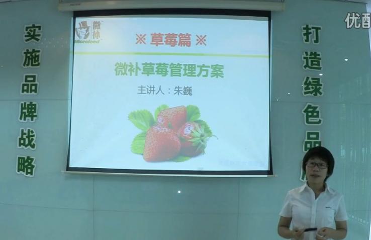草莓-提高开花坐果品质,增产方案.微补讲座