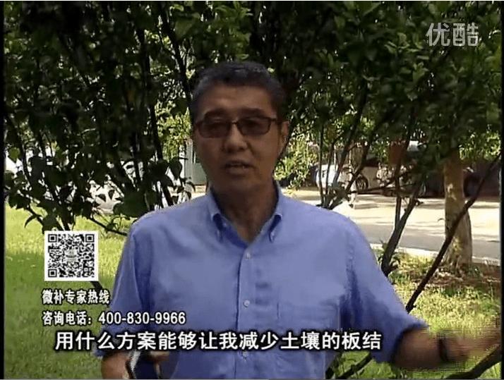 20161031珠江台摇钱树:减少化肥使用量、土壤少板结有办法