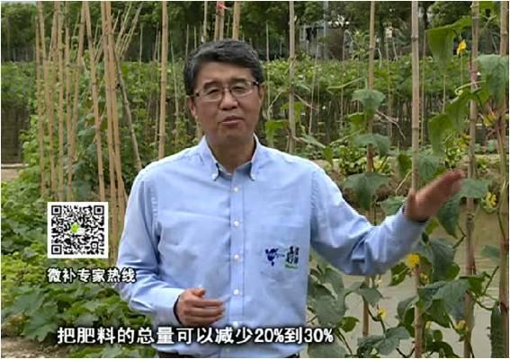 20170508珠江台摇钱树:如何提高蔬菜抗病增产