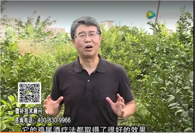 20170807珠江台摇钱树:如何提高作物抗病力