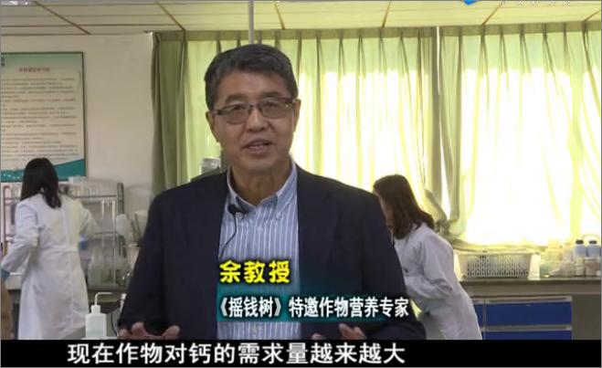 20180226珠江台摇钱树:如何解决作物缺钙问题