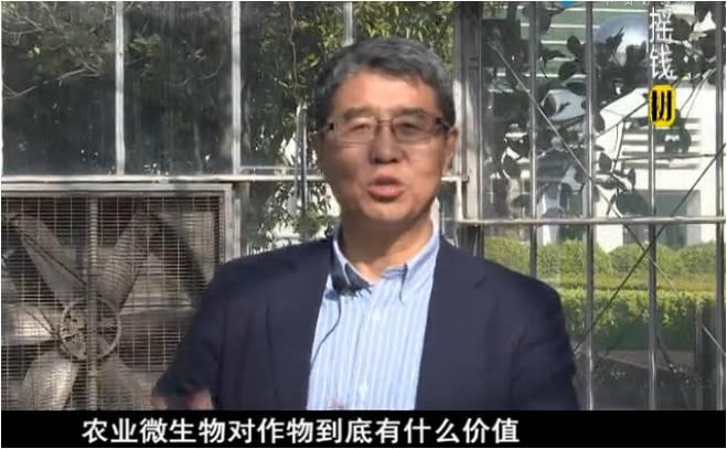20180305珠江台摇钱树:生物防控减少病害?