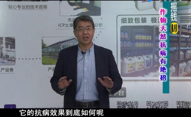 20180319珠江台摇钱树:如何提高作物免疫力
