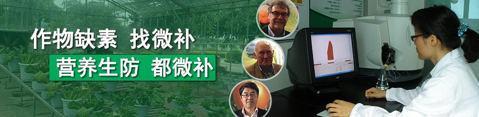 植物贝斯特全球最奢华网站