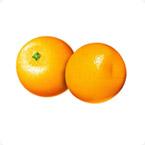 柑橘贝斯特全球最奢华网站方案