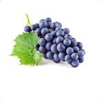 葡萄营养方案