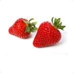 草莓营养方案