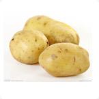 马铃薯营养方案